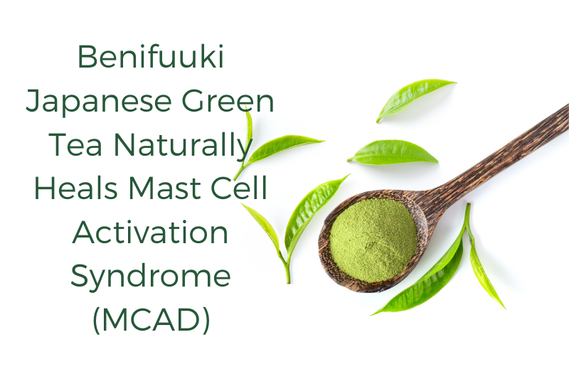 Benifuuki Japanese Green Tea Naturally Heals MCAD (Mast Cell Activation Syndrome)