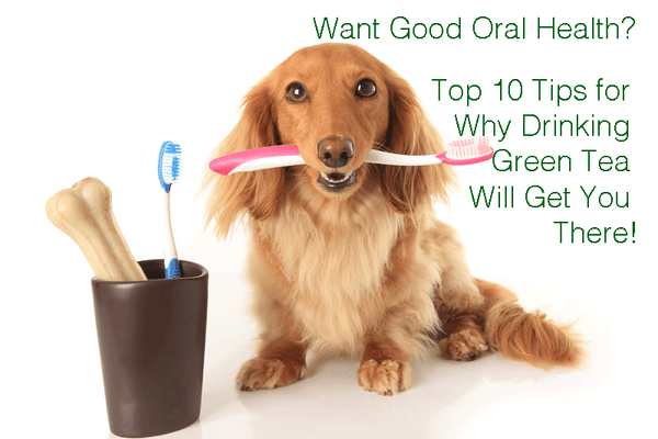 Want Good Oral Health? Get Our Top Ten Tips for Why Drinking Green Tea Will Get You There!