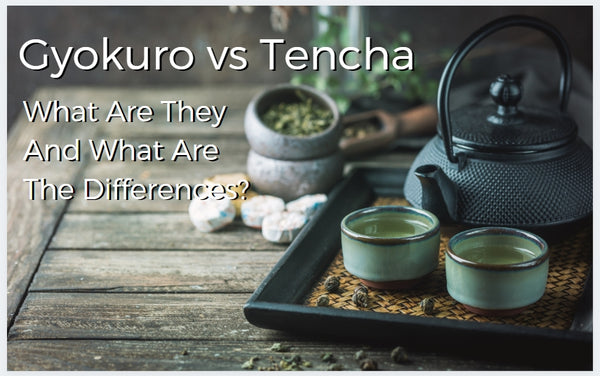 Gyokuro vs Tencha – What are they and what are the differences?