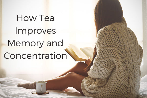 How Tea Improves Memory and Concentration
