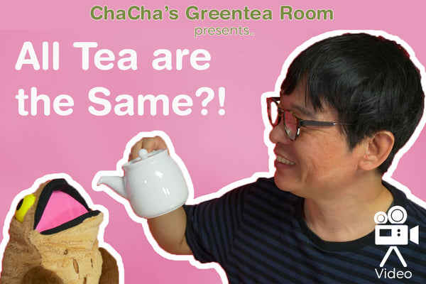 All Tea are the Same?! - ChaCha's GreenTea Room Video