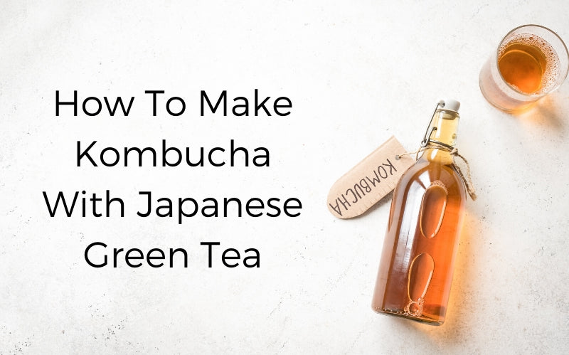 How to make Kombucha with Japanese Green Tea