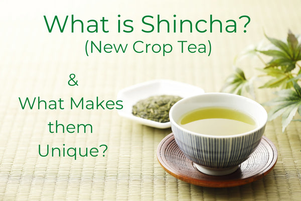 What is Shincha (New Crop Tea) And What Makes Them Unique?