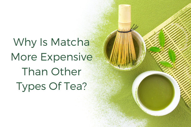 WHY IS MATCHA MORE EXPENSIVE THAN OTHER TYPES OF TEA?