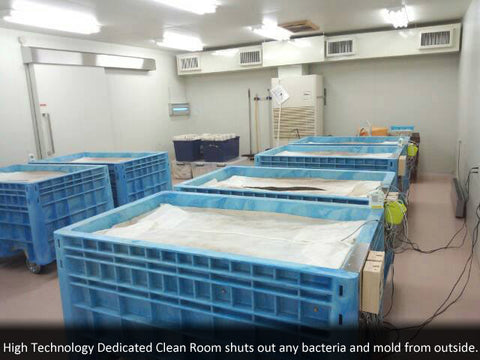 High Technology Dedicated Clean Room shuts out any bacteria and mold from outside.