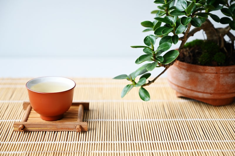 Green tea can pair well with many foods