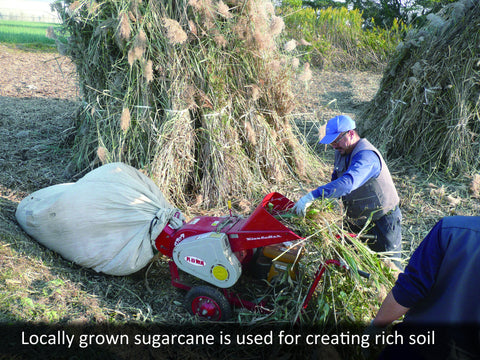 Locally grown sugarcane is used for creating rich soil