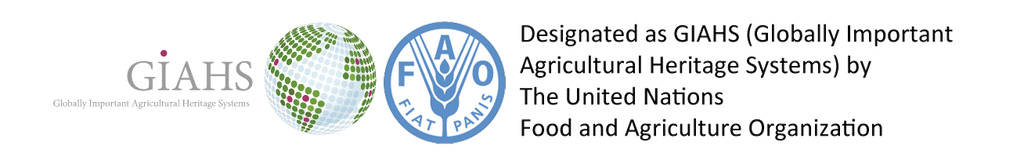 Designated as GIAHS (Globally Important Agricultural Heritage Systems) by The United Nations Food and Agriculture Organization