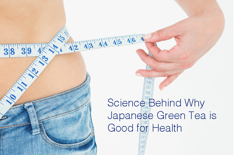 Science Behind Why Japanese Green Tea is Good for Health