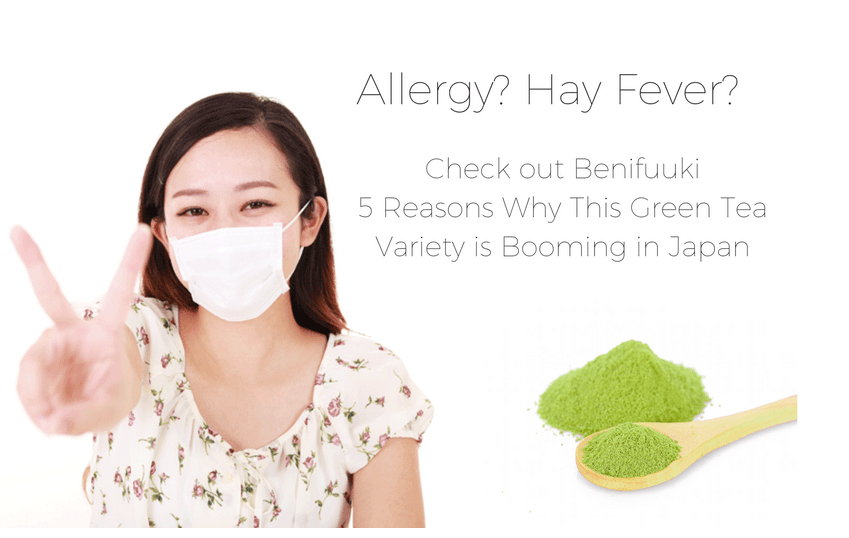 ALLERGIES? HAY FEVER? CHECK OUT BENIFUUKI TEA