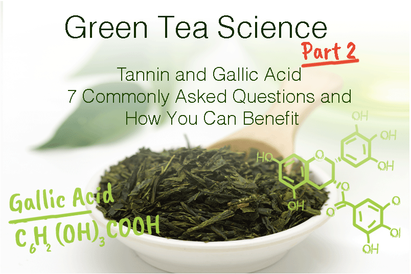 GREEN TEA SCIENCE PART 2: TANNIN, AND GALLIC ACID- 7 COMMONLY ASKED QUESTIONS AND HOW YOU CAN BENEFIT