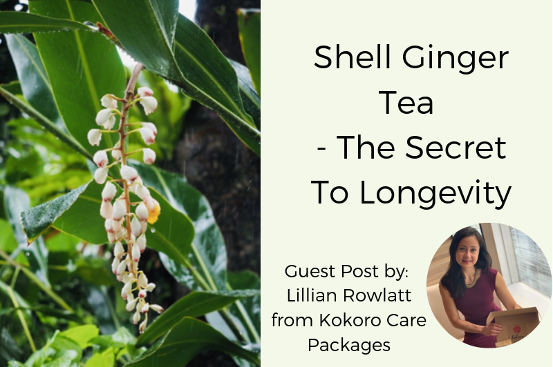 SHELL GINGER TEA - THE SECRET TO LONGEVITY
