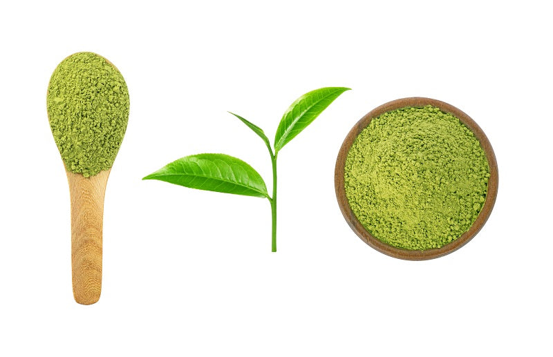 Benifuuki green tea is helpful for those with mast cell activation syndrome