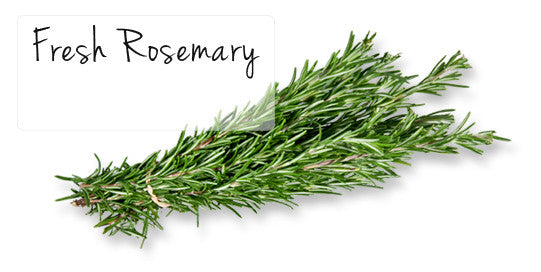 Rosemary Is Here To Stay