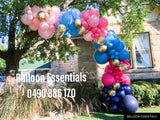 Organic  Balloons Arch - Its Twin BOY n GIRL @Gladesville