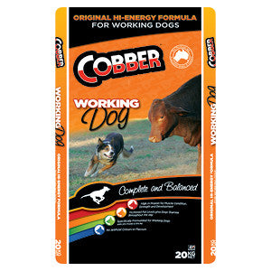 Cobber-Working Dog