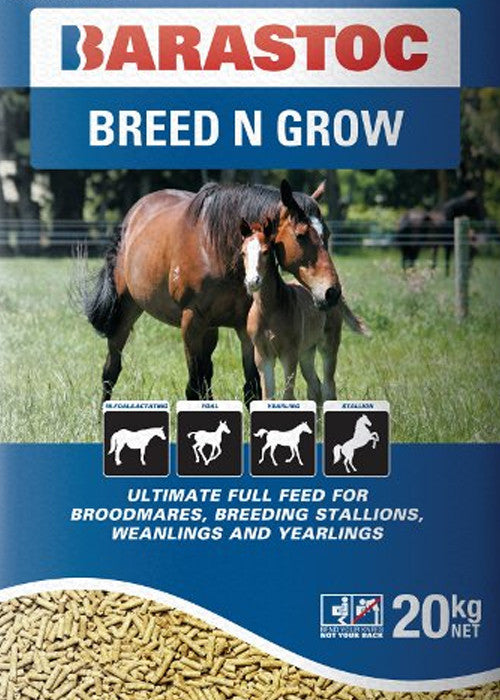 Barastoc-Horse-(Breed & Grow)