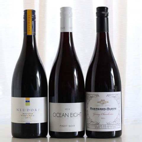 Globetrotter's Pinot Pack