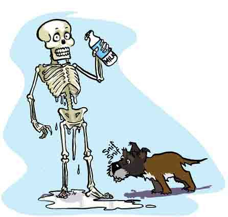 Milk is not good for the bones.