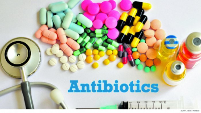 "Antibiotics and ""The War on Bacteria"""