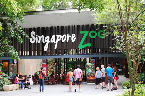 Zoo with Transfer & Opt B'fast w Orangutans
