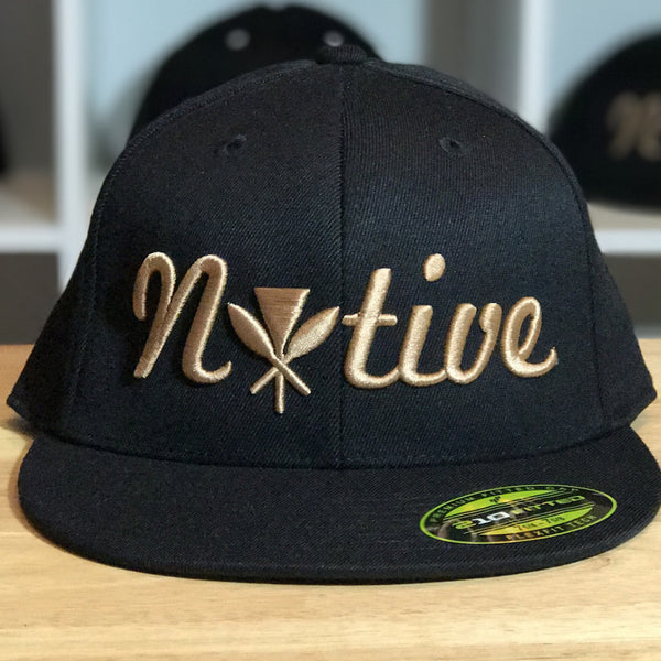 Native - 3D LOGO FITTED HAT