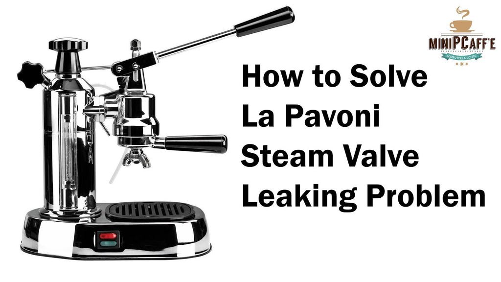 How to Solve La Pavoni Steam Valve Leaking Problem (Europiccola / Professional Models)