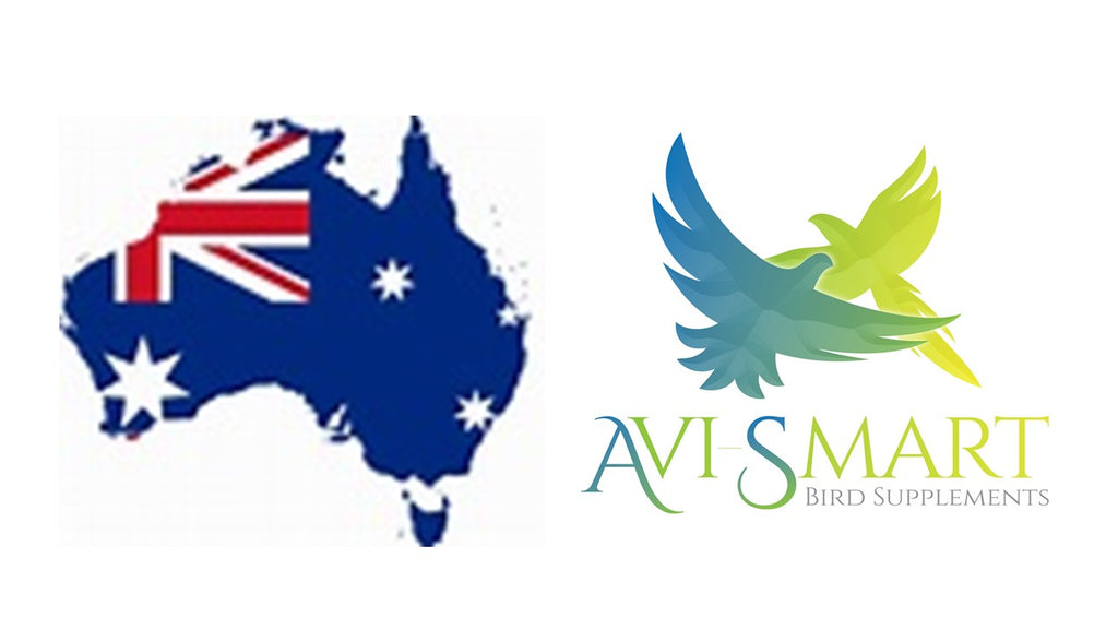Avi-smart Australia Breed Plus Feather Support