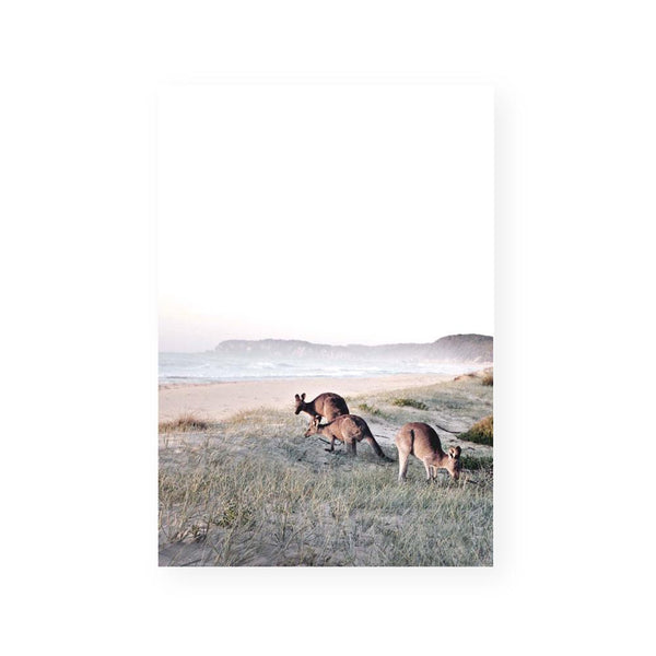 print beach coastal art kangaroo australian framed art canvas