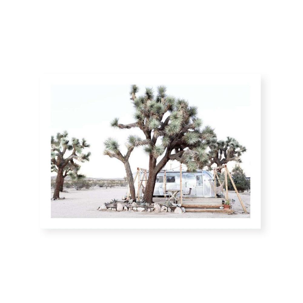 Joshua Tree Camp Print