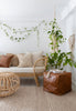 coastal boho living room natural organic plants