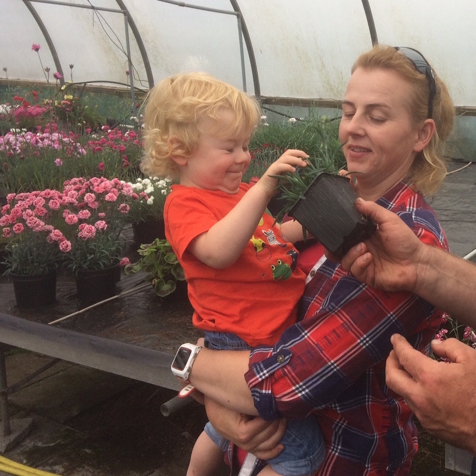 Our family owned plant nursery
