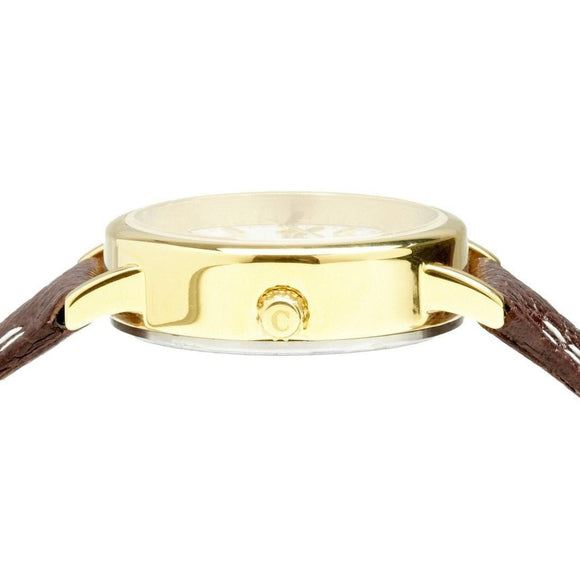 Classic gold and Brown Strap Small Ladies Watch