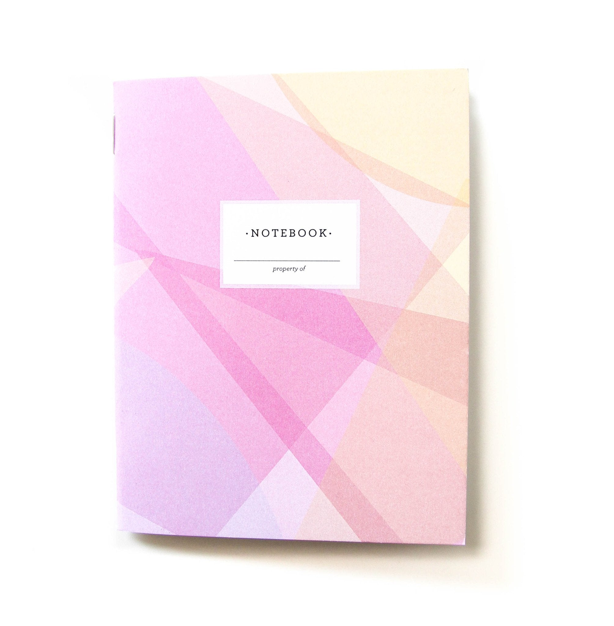 The Penny Paper Co. - Mini Notebook, Colour Theory (Pinks)