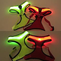 LED Dog Light Up Collar