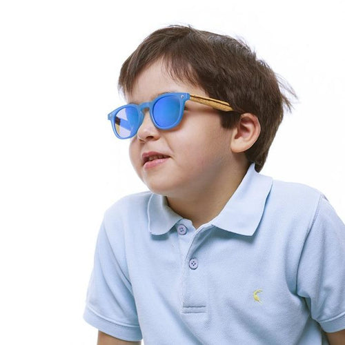 PE02 Ash Blue Sunglasses