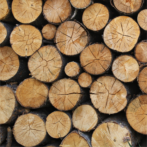 Brown Logs Photo Backdrop