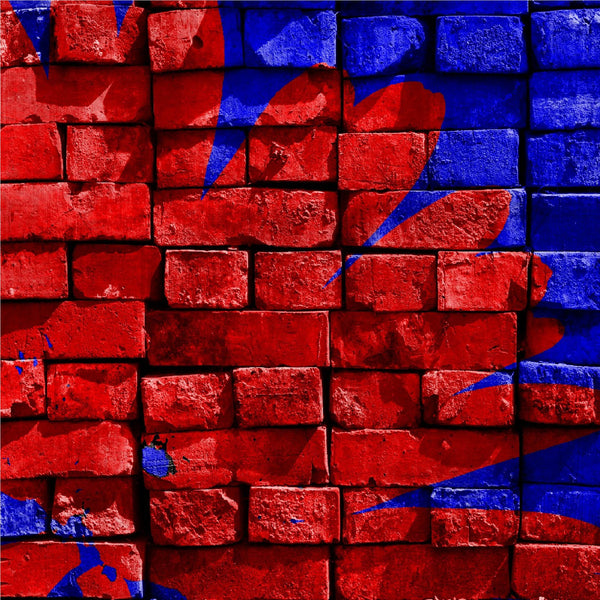 Blue & Red Painted Bricks Photo Backdrop