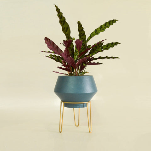 Zunil Planter