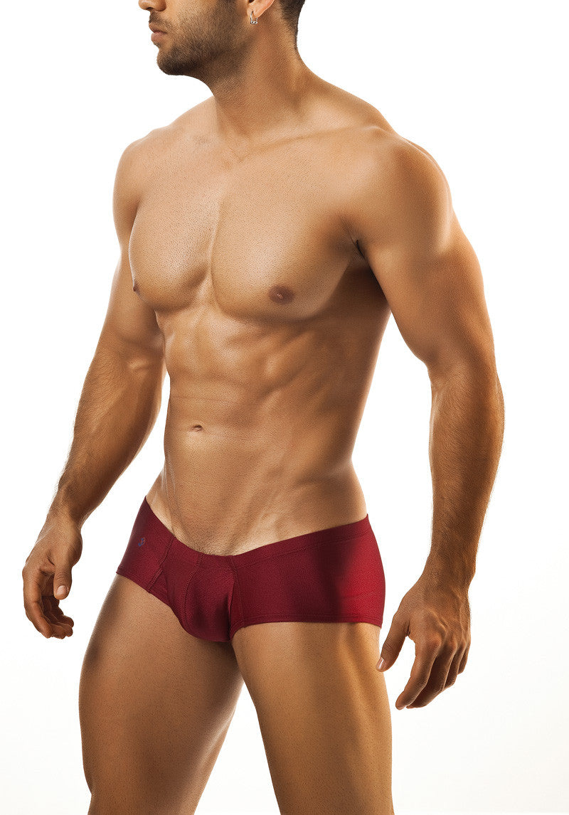 Joe Snyder Cheek Boxer - Malebasics Canada - 19