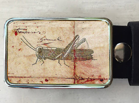 Insect Grasshopper Belt Buckle - Red Dove Studios - 1