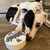 Dog Birthday Cake Graffiti