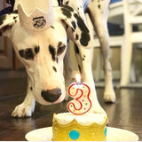 Dalmatian dog birthday cake