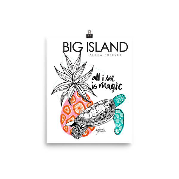 Big Island Illustration Poster