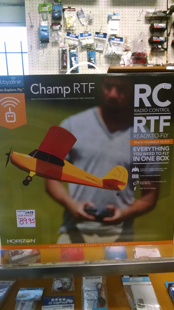 Hobby Zone Champ RC Plane
