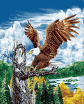 Mink Style Queen Size Blanket, Eagle on the tree branch, Q933