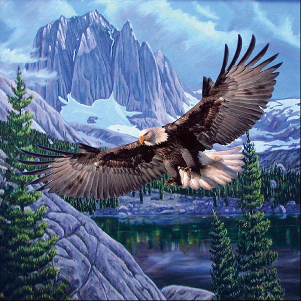 Mink Style Queen Size Blanket, Flying Eagle, Q930