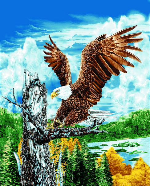 2 Ply, Mink Style Queen Size Blanket, Eagle on the tree branch, Q8933