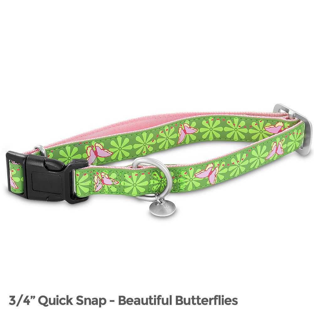 PetSafe Bark Avenue Quick Snap Collar (Medium, Beautiful Butterflies) - BA-QSC-M-3/4-BEA