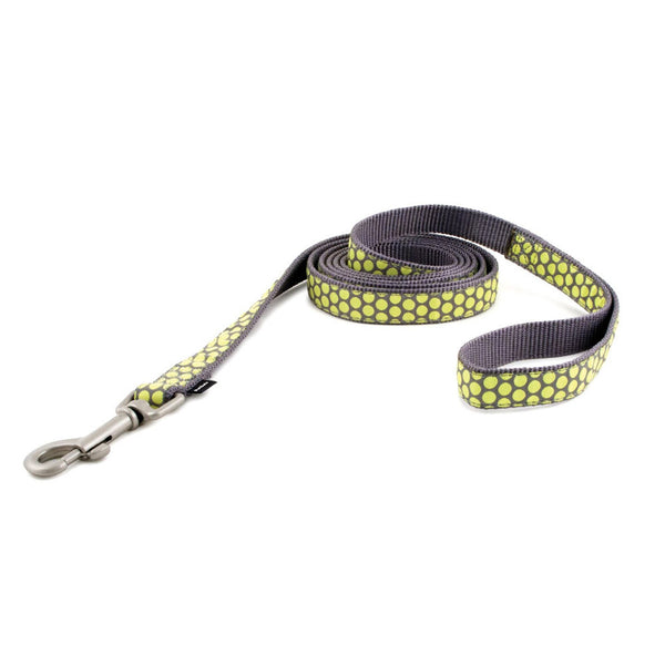 PetSafe Fido Finery Leash (Dotted Bliss, 6' x 1/2) - FIN-LSH-1/2-X-6-DOT
